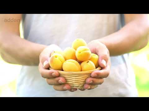 Which 3 Foods to Avoid for Pituitary Neuroendocrine Tumors?