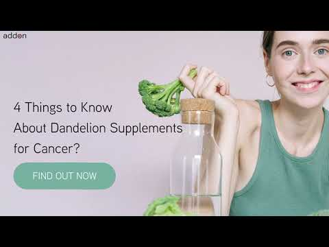4 Things to Know About Dandelion Supplements for Cancer?